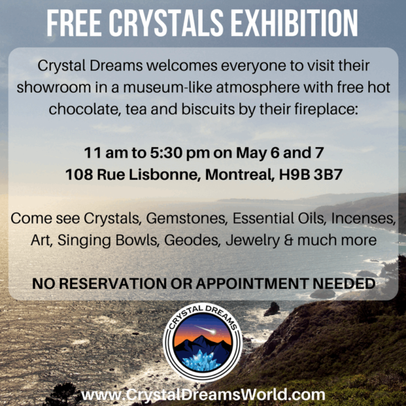 Spring Open House at Crystal Dreams
