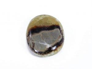 Septaria Palm Stone Crystal Dreams