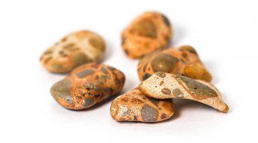 Leopardite Tumble 2