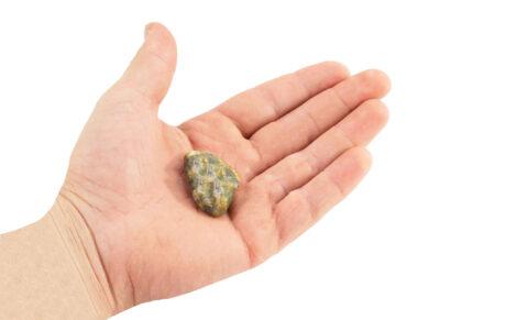 Apatite Green Tumbled - Crystal Dreams