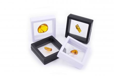 Amber with fossil insect polished gem in box - Crystal Dreams