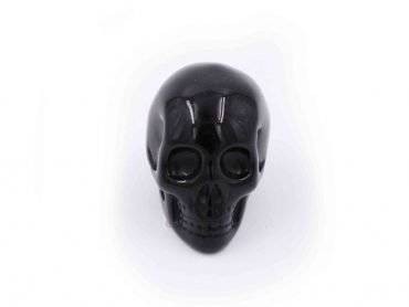 Obsidian Skull-Crystal Dreams