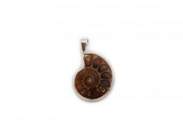 Ammonite Sterling Silver Pendant- Crystal Dreams