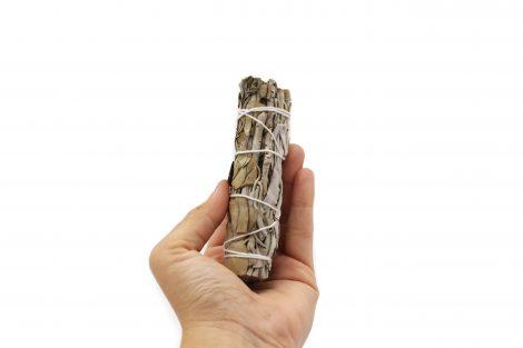 Eucalyptus and Sage