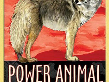 Power Animal Oracle cards - Crystal Dreams