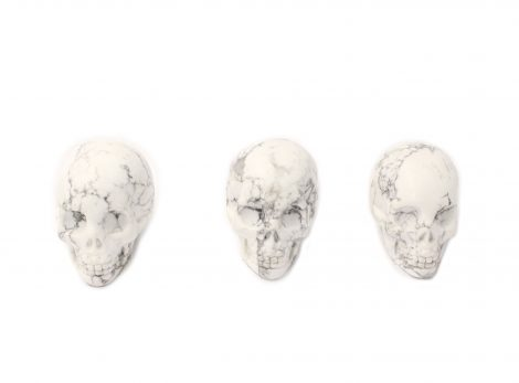 Howlite Skull - Crystal Dreams
