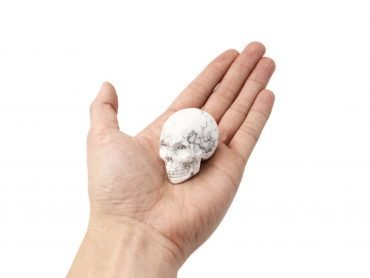Howlite Skull (hand) - Crystal Dreams