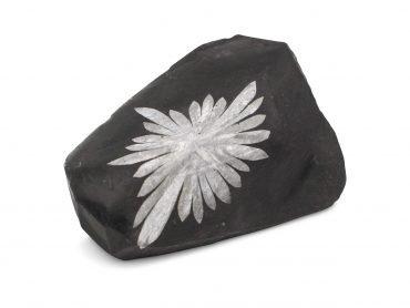 Chrysanthemum Polished Free Form - Crystal Dreams