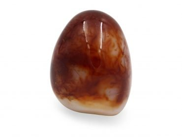 Carnelian Cut Base Polished Freeform - Crystal Dreams