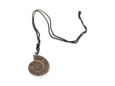 Ammonite Necklace Pendant - Crystal Dreams