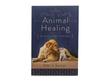 Animal Healing - Crystal Dreams