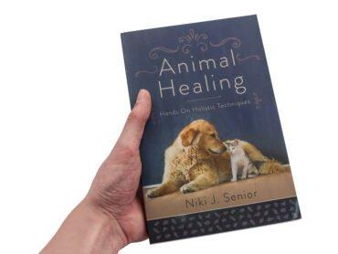 Animal Healing (Hand) - Crystal Dreams