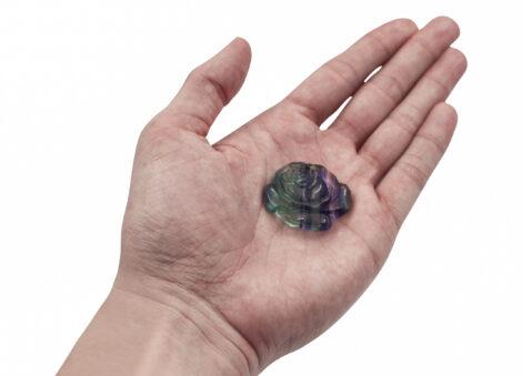 Fluorite Flower - Crystal Dreams