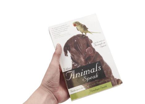 When Animals Speak - Crystal Dreams