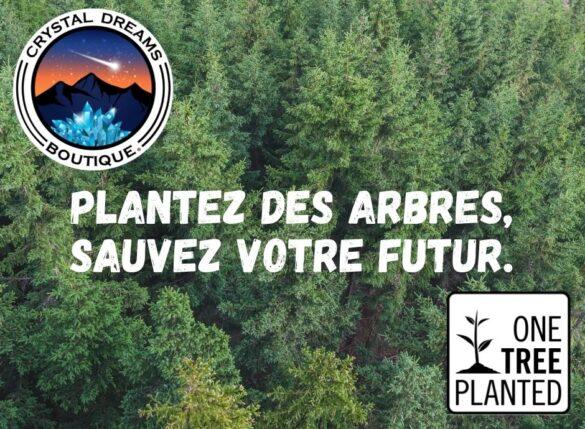 Planting-Cherry-Blossom-FR